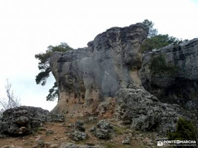 Nacimiento Río Cuervo;Las Majadas;Cuenca;hayedo montejo monte hijedo refugio de la renclusa irati n